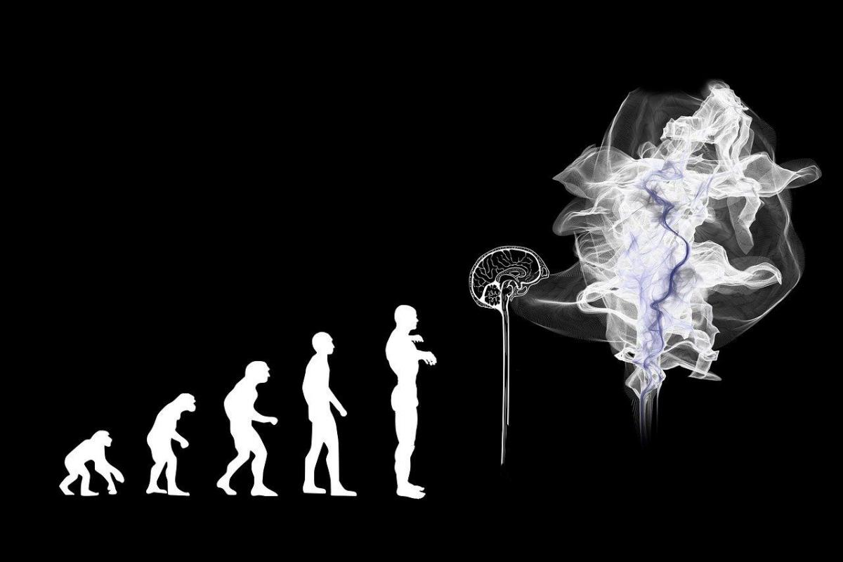 Humans are Not Obsolete: We Bring the Razor