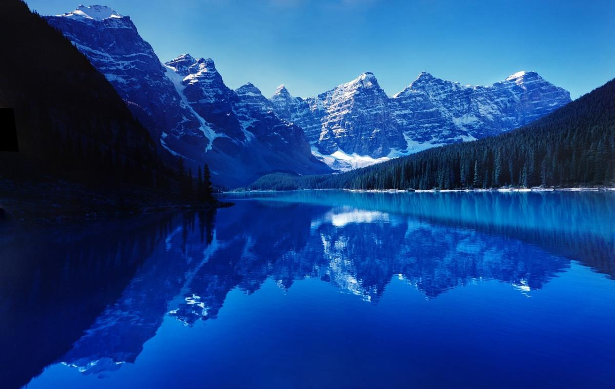 AIMA: Looking at the Canadian Landscape