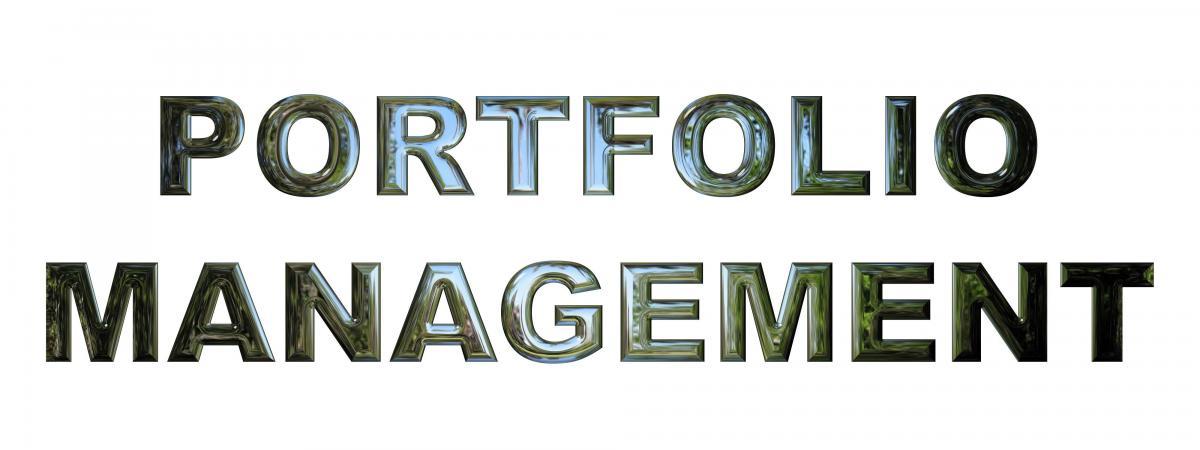 Jacobs, Levy, and Markowitz on Portfolios