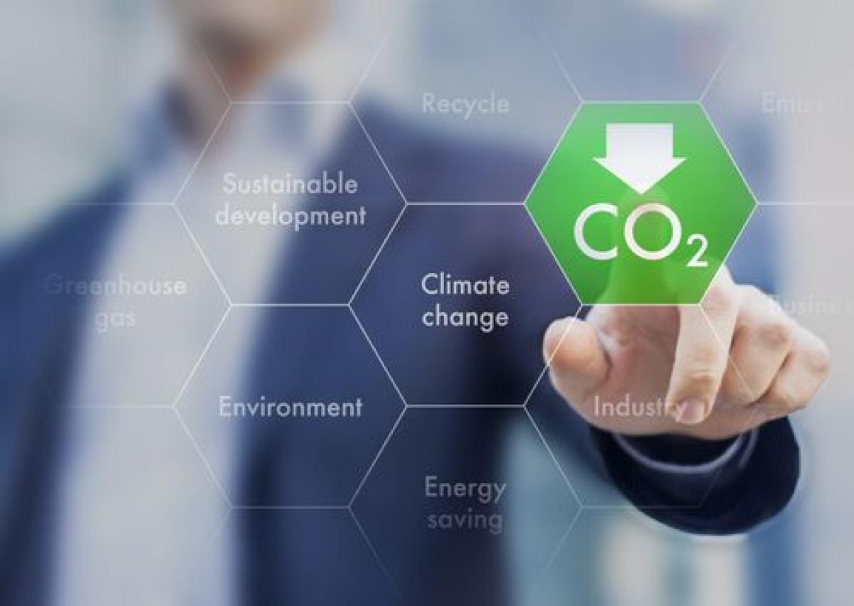 Targeted Strategies for Managing Carbon Risk